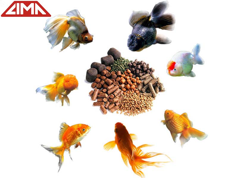 Fish Feed and Feeding for Rainbow Trout